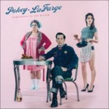 Something in the Water - Vinile LP di Pokey LaFarge