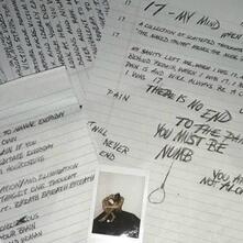 17 - Vinile LP di XXXTentacion