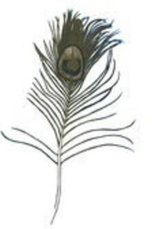 Making Ghosts - Vinile LP di Great Peacock