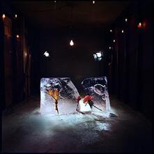 Salt - Vinile LP di Shy Girls