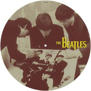 Thirty Weeks in 1963 - Vinile LP di Beatles