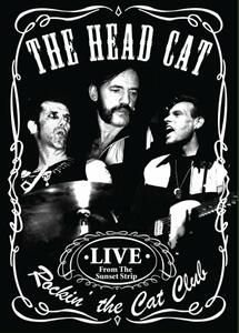 Rockin' the Cat Club (DVD) - DVD