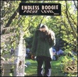 Focus Level - Vinile LP di Endless Boogie