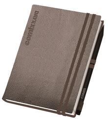 Agenda Comix Luxury Edition 2020, 12 mesi, giornaliera mini Argento. Con matita - 11x15