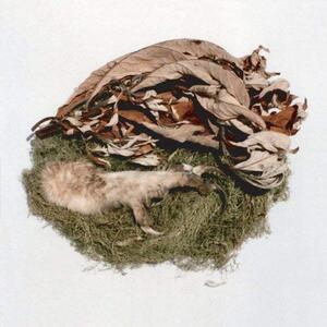Offering - Vinile LP di Bird by Snow