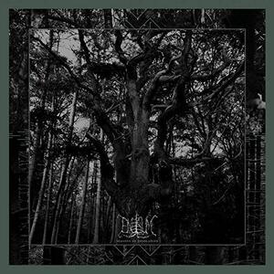Seasons of Desolation - Vinile LP di Enisum