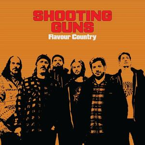 Flavour Country - Vinile LP di Shooting Guns