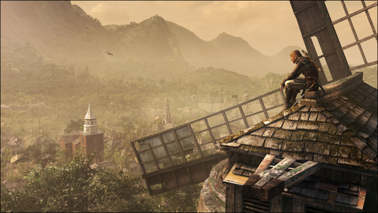 Videogioco Assassin's Creed IV: Black Flag Bonus Edition PlayStation4 7