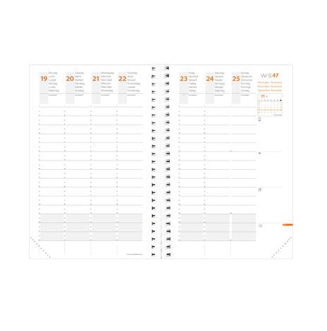 Agenda settimanale 2021, 13 mesi, Time&Life Quo Vadis ML Large Blu - con elastico e rubrica - 2