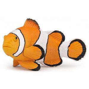 Pesce pagliaccio - 2