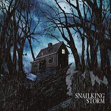 Storm - Vinile LP di Snailking
