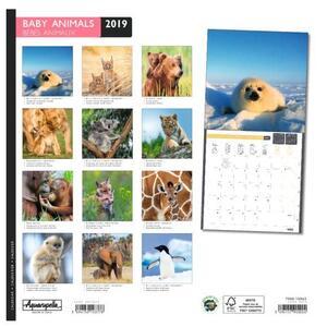 Calendario 2019 Cuccioli Aquarupella. Bebes Animaux - 30x30 - 2
