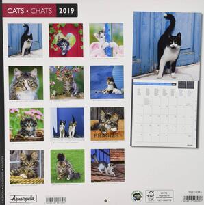 Calendario 2019 Gatti Aquarupella. Chats - 30x30 - 2