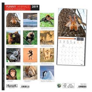 Calendario 2019 Animali divertenti Aquarupella. Drole d'animaux - 30x30 - 2