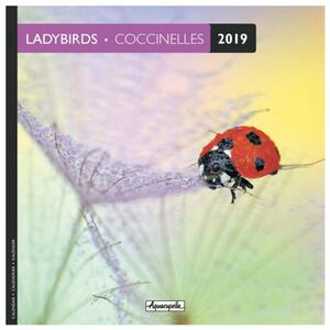 Calendario 2019 Coccinelle Aquarupella. Coccinelles - 16,5x16,5