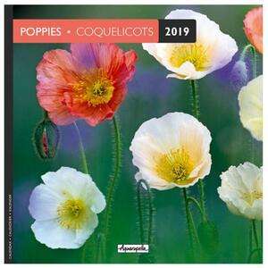 Calendario 2019 Papaveri Aquarupella. Coquelicot - 16,5x16,5