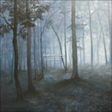 Melatonin Spree - Vinile LP di Bantam Lyons