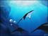 Videogioco Fantasy Aquarium by DS Nintendo DS 7