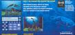 Videogioco Fantasy Aquarium by DS Nintendo DS 10