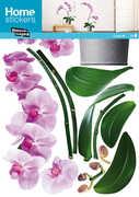 Idee regalo Sticker decoro murale Orchidee Rose Nouvelles Images