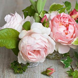Cartoleria Biglietto d'auguri Beyler-Roses Et Boutons Sin Adesso