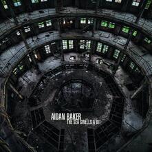 Sea Swells a Bit - Vinile LP di Aidan Baker