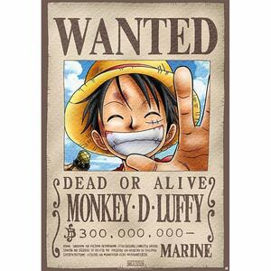 Lastra in Metallo One Piece. Luffy Wanted X5 - 3
