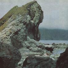 Many Nights - Vinile LP di Motorama
