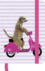 Taccuino TeNeues GreenJournal 10 x 15. Fab Funky on Wheels