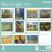 Cartoleria Calendario 2017 Fine Arts 30x30. Van Gogh TeNeues 1