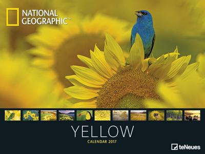 Cartoleria Calendario 2017 Poster. National Geographic Yellow TeNeues 0