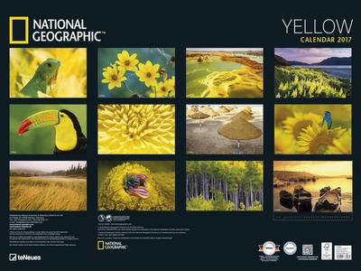 Cartoleria Calendario 2017 Poster. National Geographic Yellow TeNeues 1