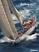 Cartoleria Calendario 2017 Poster. Sailing TeNeues 0