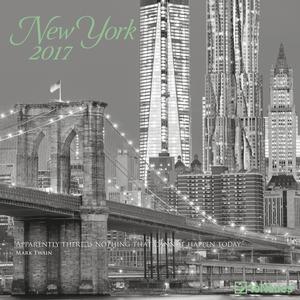 Cartoleria Calendario 2017 Photography 30x30. New York TeNeues 0