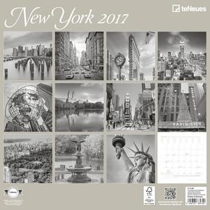 Cartoleria Calendario 2017 Photography 30x30. New York TeNeues 1