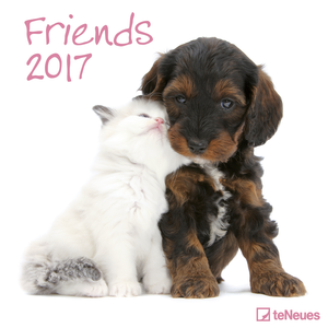 Cartoleria Calendario 2017 Photography 30x30. Friends TeNeues 0