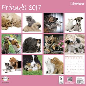 Cartoleria Calendario 2017 Photography 30x30. Friends TeNeues 1