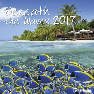 Cartoleria Calendario 2017 Photography 30x30. Beneath the Waves TeNeues 0