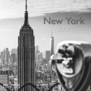 Cartoleria Calendario 2017 Art & Image 30x30. New York TeNeues 0