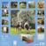 Cartoleria Calendario 2017 Art & Image 30x30. Cows TeNeues 1