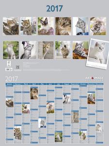 Cartoleria Calendario 2017 Art & Image Poster 48x64. Cats TeNeues 1
