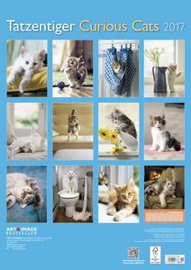 Cartoleria Calendario 2017 Art & Image 29,7x42. Curious Cats TeNeues 1