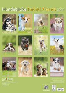 Cartoleria Calendario 2017 Art & Image 29,7x42. Faithful Friends TeNeues 1