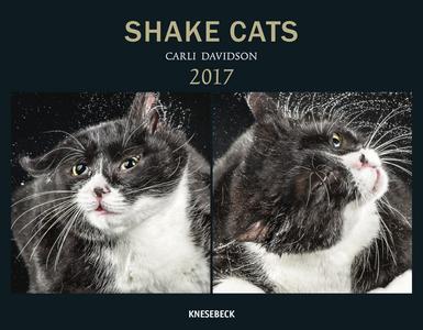 Cartoleria Calendario 2017 Knesebeck. Shake Cats TeNeues 0