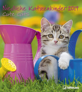 Calendario da muro 2019 TeNeues 30 x 34. Cute Cats. Gattini