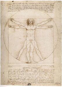 Leonardo: Uomo Vitruviano. Puzzle 300 Pezzi - 3