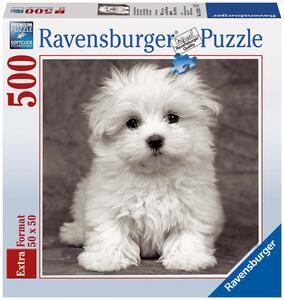 Cucciolo di Maltese Puzzle 500 pezzi Ravensburger (15221)