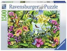 Puzzle 1500 pz. Find the Frogs