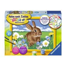 Malen nach Zahlen. Süßes Kaninchen