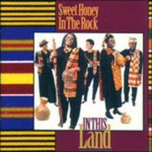 In This Land - CD Audio di Sweet Honey in the Rock